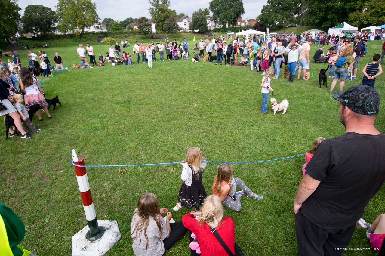 St James Park Shirley Dog Show